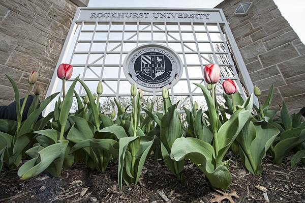 Rockhurst  University was one of the founding partners of the Tulips on Troost project and the university continues to plant tulips along Troost.