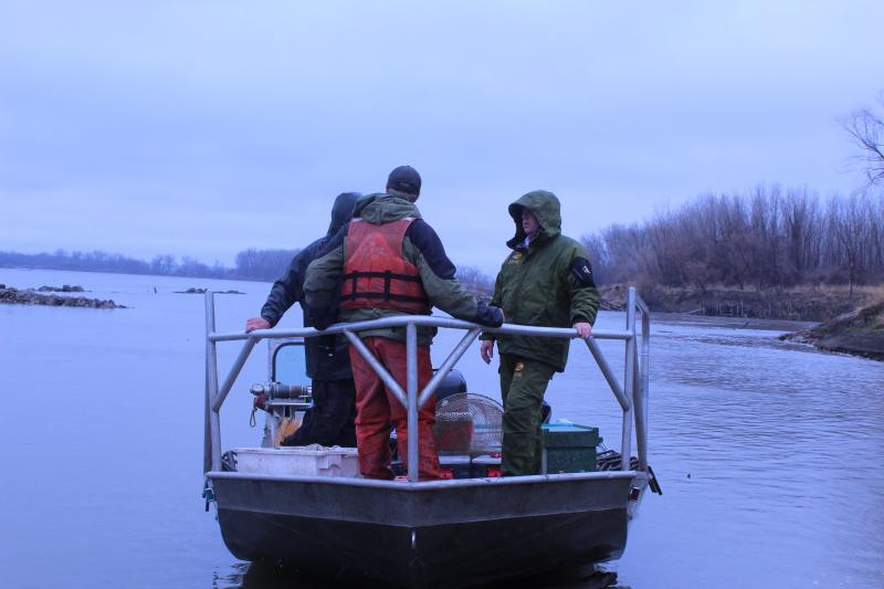 A crew made up of Missouri Department of Conservation and Army Corps of Engineers workers takes off on the Missouri River for the annual broodstock collection that takes place the last two weeks of March and first two weeks of April.