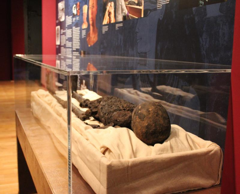 King Tut's mummy is on display with details about recent discoveries made with DNA testing.