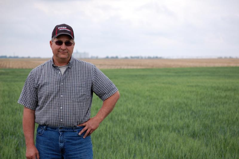 : In May, Haarberg was still holding out hope that late rains could improve his wheat yield.