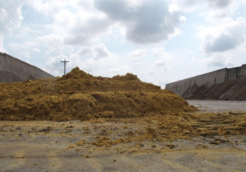 A pile of wet distillers grains was recently unloaded at the Van Housen feedlot. The ethanol by-product is usually cheaper than corn, keeping feed costs down in the Midwest.