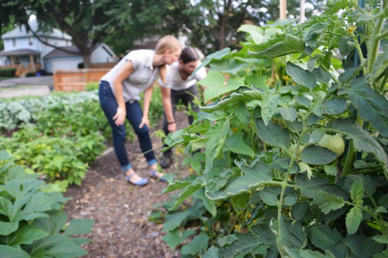 Lisa Hummel and Neil Rudsill tend to their garden outside of their home in the Ivanhoe neighborhood. Tomatoes, peppers and lavender are some of the plants that grow in their garden.