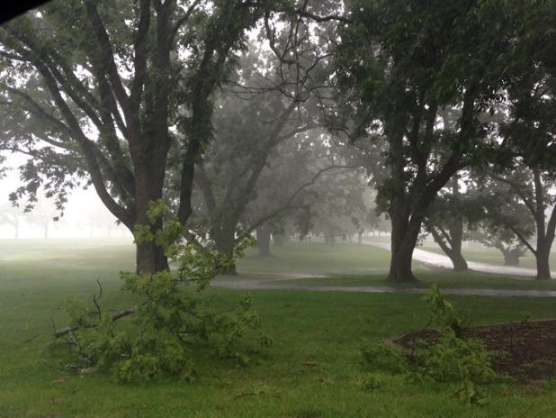 Tree limbs down after storm passes through Unity Village just north of Lee's Summit, Missouri.