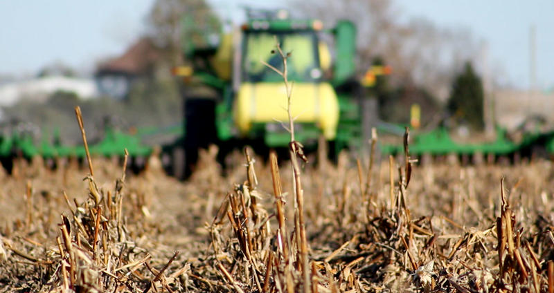 Cover crops, which aren't planted to make money, can add essential nutrients like carbon and nitrogen to the soil.