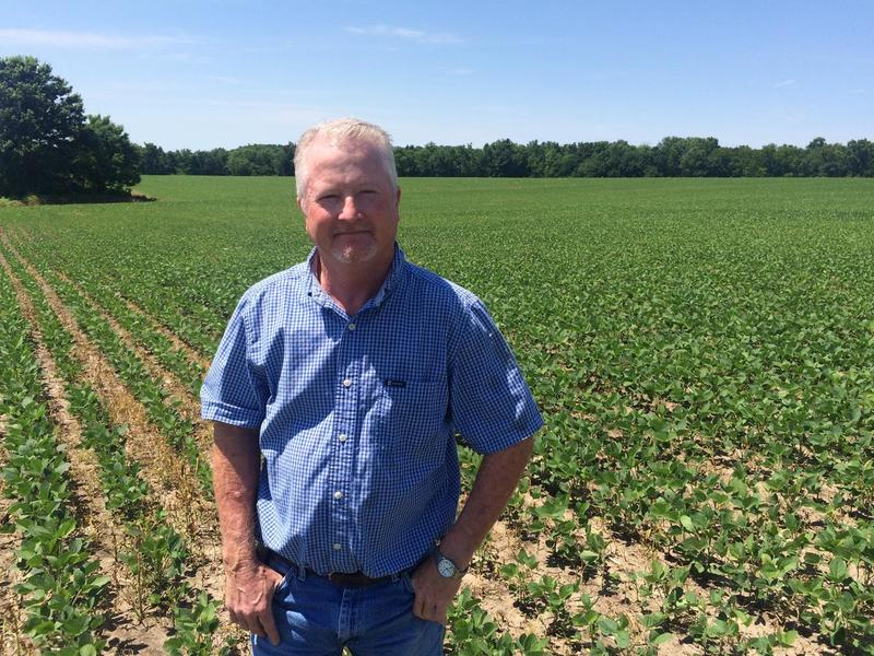 Ronnie Russell, who farms near Richmond, Mo., stands in one of his soybean fields.