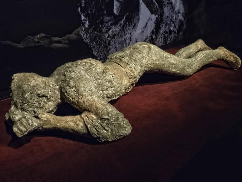 "Nothing says ""ferocious"" quite like the encapsulated corpses of ancient Romans killed by volcanic ash from Mount Vesuvius. Hey, nobody said history was always pretty."