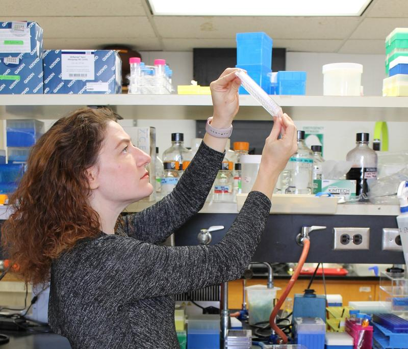 Joanna Slusky, a KU scientist pictured in her lab, was announced today as one of five recipients of a fellowship from the Gordon and Betty Moore Foundation for her work on antibiotic resistance.