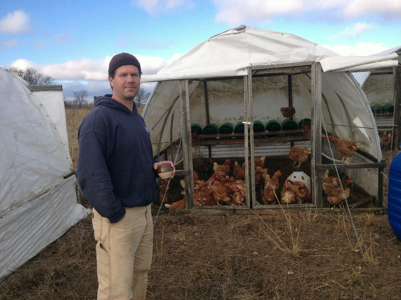 Jefferson County farmer Phil Holman-Hebert raises hens and sells their eggs for a premium at farmers markets and restaurants.