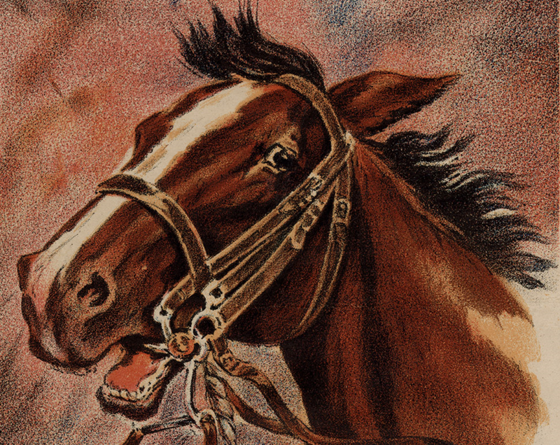 Detail of a 1917 poster for the British Blue Cross Fund for Wounded Horses..