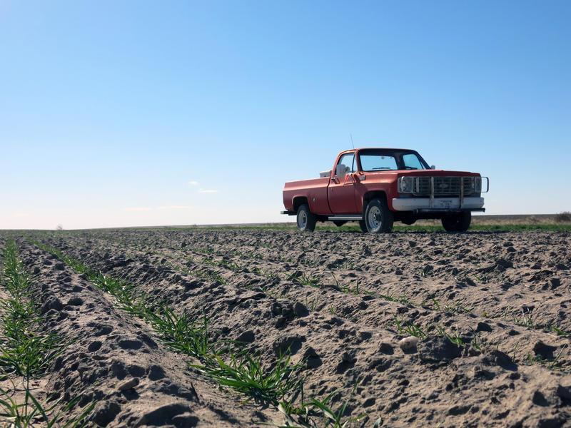 A Colorado farm field