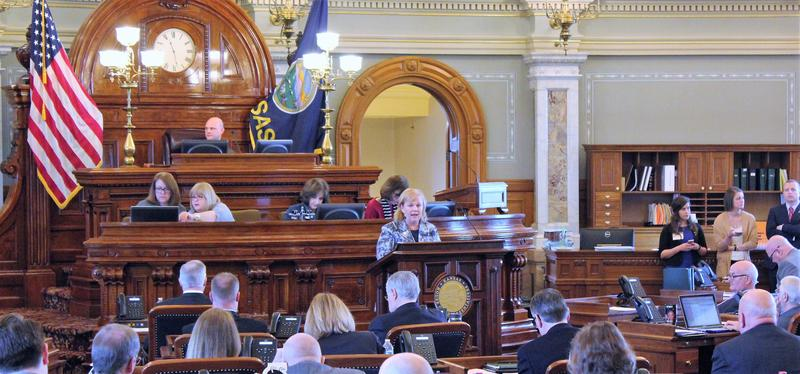 Rep. Susan Concannon spoke Monday during debate of a bill to expand Medicaid eligibility. House members fell short of the 84 votes needed to override Gov. Sam Brownback's veto of the bill.