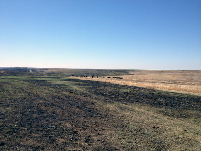 Wildfires in 2017 charred more than 461,000 acres of land in Clark County, Kansas. Dry, windy conditions have persisted in the lead-up to this year's fire season, says the mayor the county seat, Ashland.