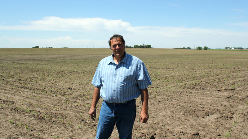 Farmer Tim Mueller raises corn and soybeans in Columbus, Nebraska. He is hoping to get into the chicken business by signing a contract with a subsidiary of Costco.