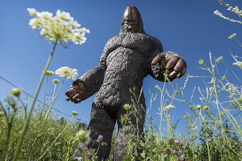 Bigfoot reaches down to pick a flower growing at Powell Gardens. 'Gardens of Myth,' a new sculptural exhibit, explores legends and myths from around the globe.