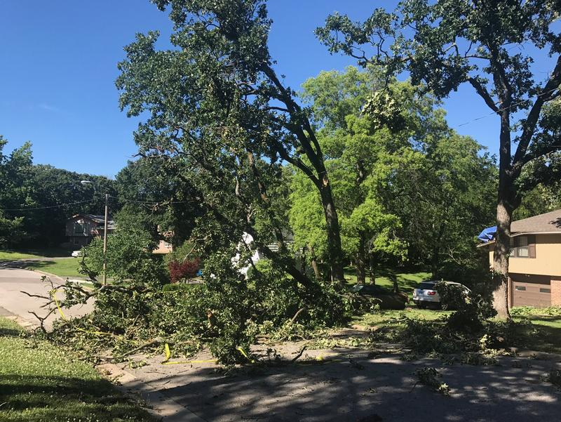 A fallen tree blocked a road and damaged a home in South Kansas City.