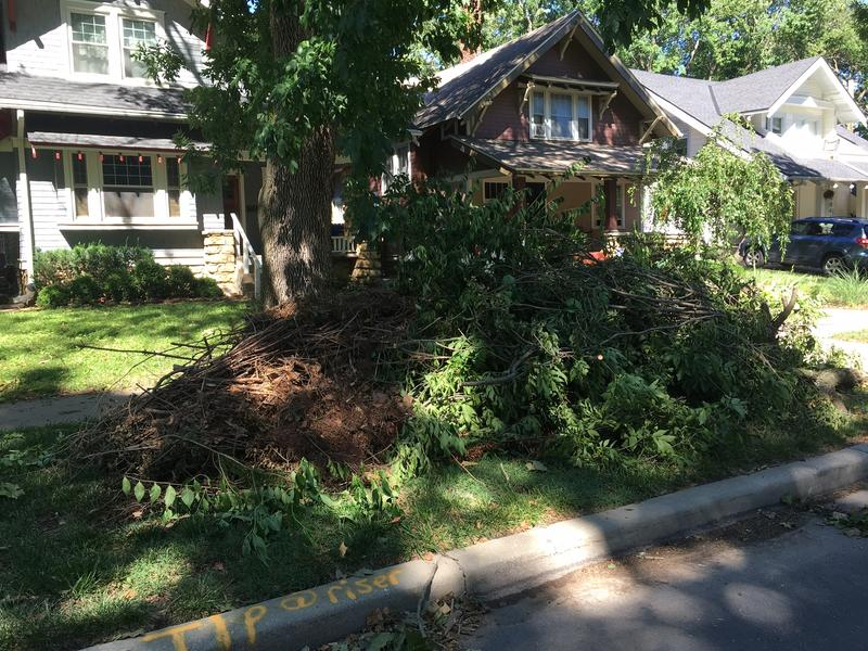 Neighbors piled downed branches near Kansas City's Gillham Park
