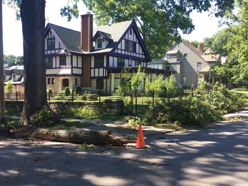 High winds caused significant damage to trees in Kansas City's Hyde Park neighborhood Saturday night.