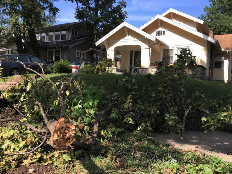 A fallen limb in front of a house along Rockhill Road in Kansas City, Missouri following the July 22 storms.