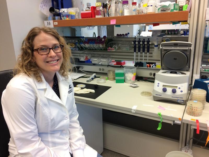 Sarah Zanders of the Stowers Institute studies how selfish genes function.