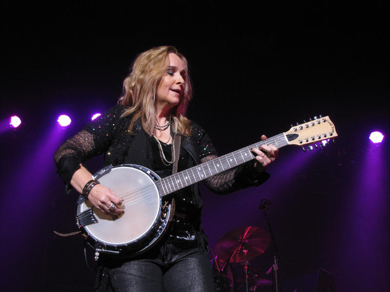 "Melissa Etheridge calls musicians ""mirrors of society"" and says they should try to speak for those without voice."