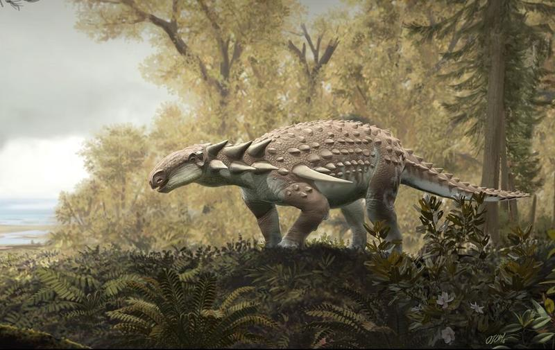Kansas' only-known dinosaur, Silvisaurus condrayi, as depicted by Oscar Sanisidro, a scientific illustrator at the University of Kansas.