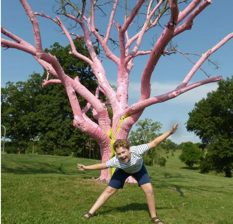 Ike McKee heard about the new pink tree at Swope Park, found it, and struck a pose.