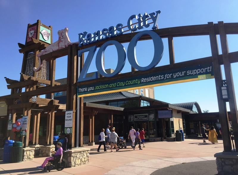 The chairman of the Kansas City Zoo board says without a $7 million investment from the city a proposed aquarium project might die.