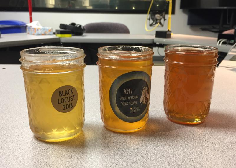 Three jars with amber liquid. The gradient starts with the lightest on the left.