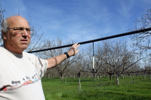 Walnut farmer Russ Lester is concerned about the effects climate change could bring to his California farm.