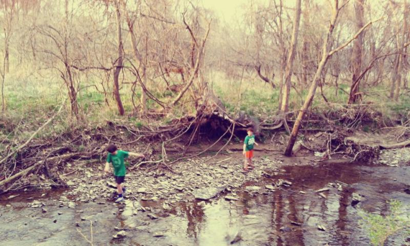"""I love this shot my wife Susan Robichaud took of our two boys playing in the East Fork of Line Creek on a very warm St. Patrick's Day this year."""