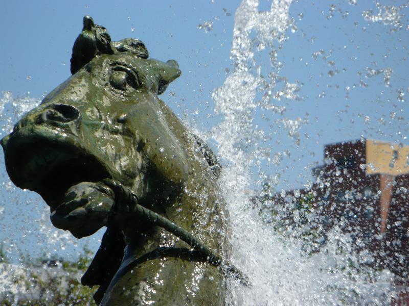 A Horse in the J.C. Nichols Memorial Fountain