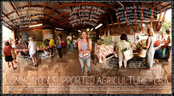 One of the images created by the Lexicon of Sustainability. This photo was taken at Cure Organic Farm in Boulder, Colo., in August 2010.