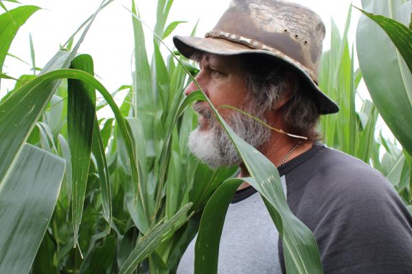 Because of the short water supply, farmer Anthony Stevenson only planted half his corn field this year.
