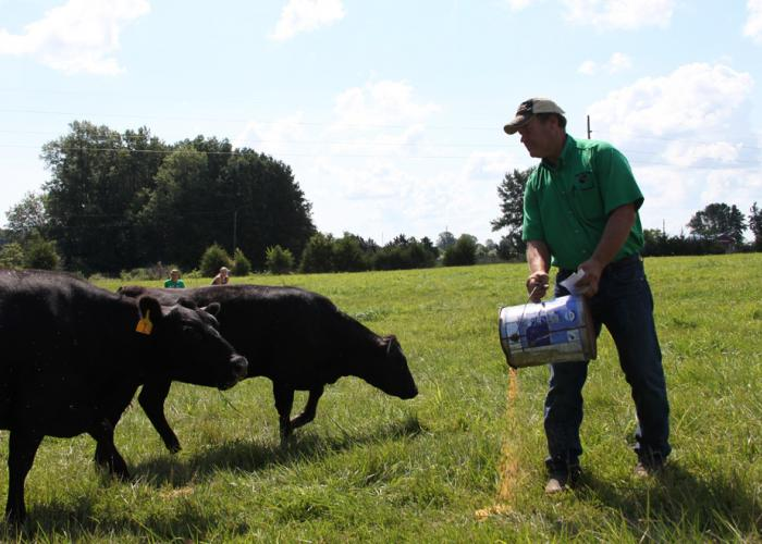 Drone To Fly Over Livestock Operations And 'Ag-Gag' Laws ...