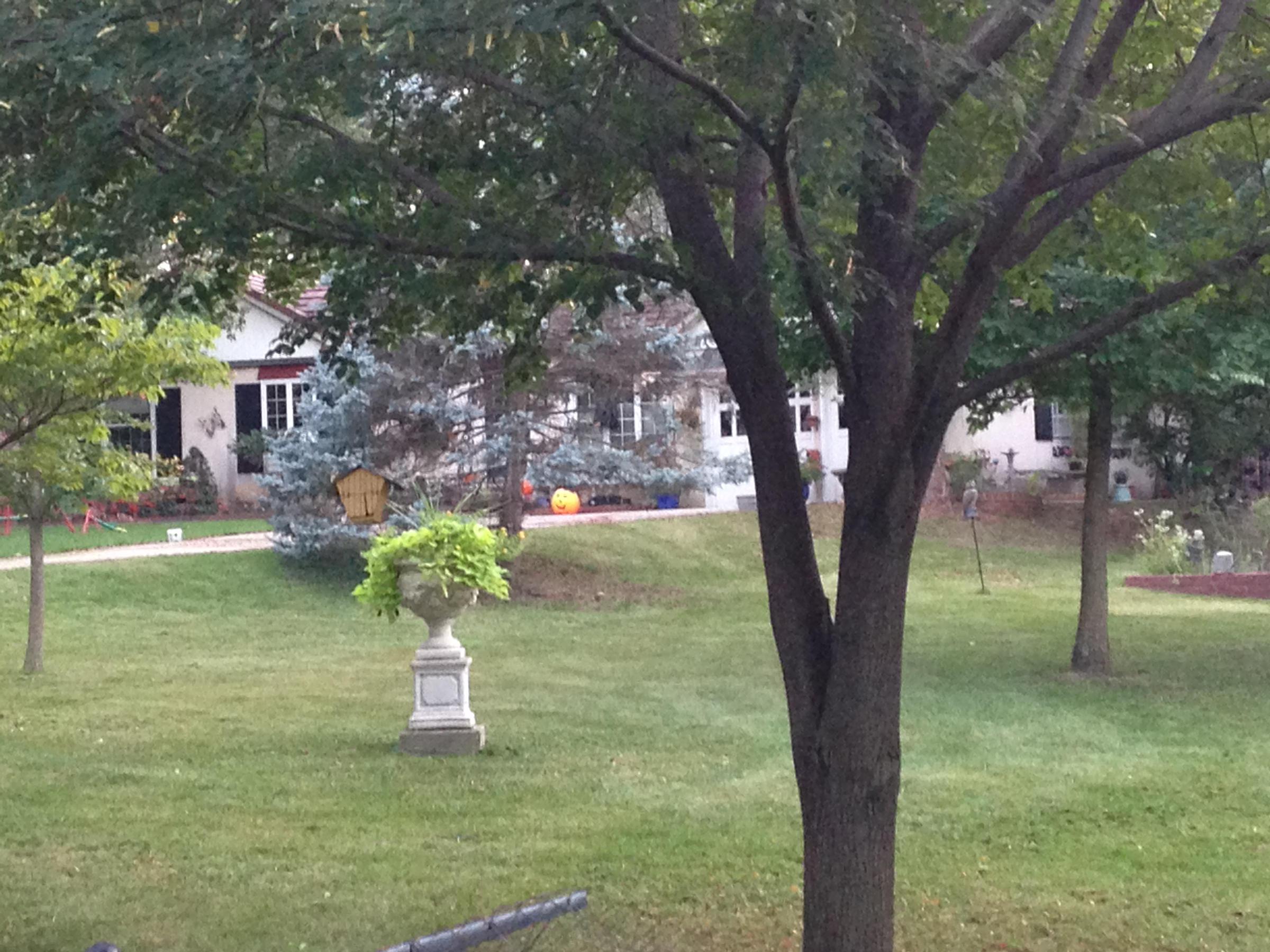Fantastic Olive Garden Clarksville In Photos Beautiful Garden