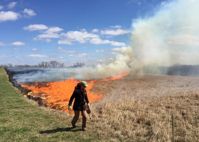 Emily Meier uses a drip torch to light the upwind edge of a field in Gentry County, Mo.