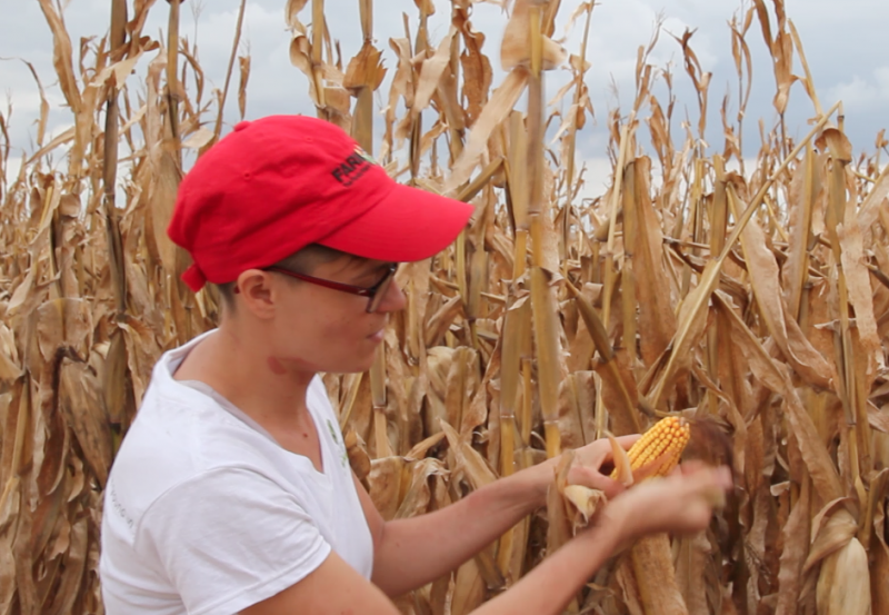"Harvest Public Media's Abby Wendle competed in the Illinois State Corn Husking Contest earlier this year for the first time. She plans to wear a long-sleeve turtleneck next year to avoid ""corn rash,"" a common ailment among huskers."