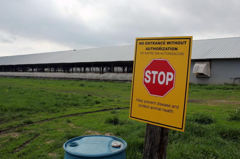 A sign at the edge of Bill Bevans' turkey farm near Waverly, Nebraska, serves as a biosecurity checkpoint.
