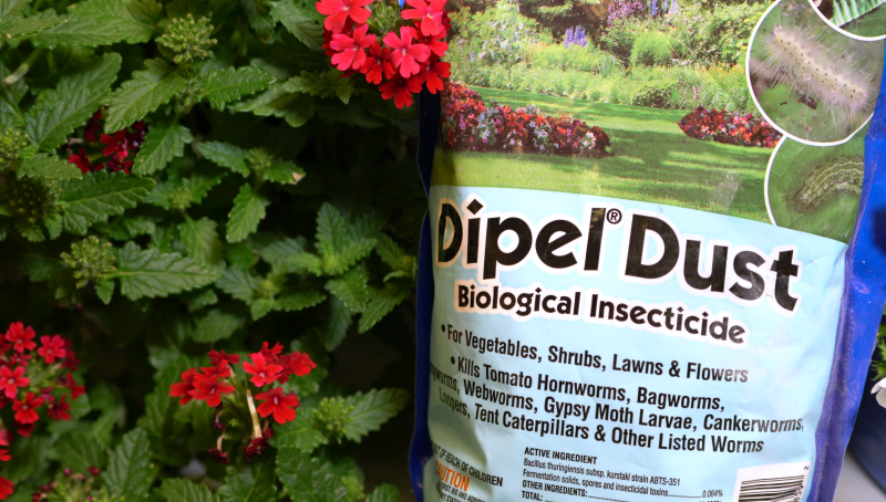 Insecticides are used by both farmers and home gardeners to kill bugs.