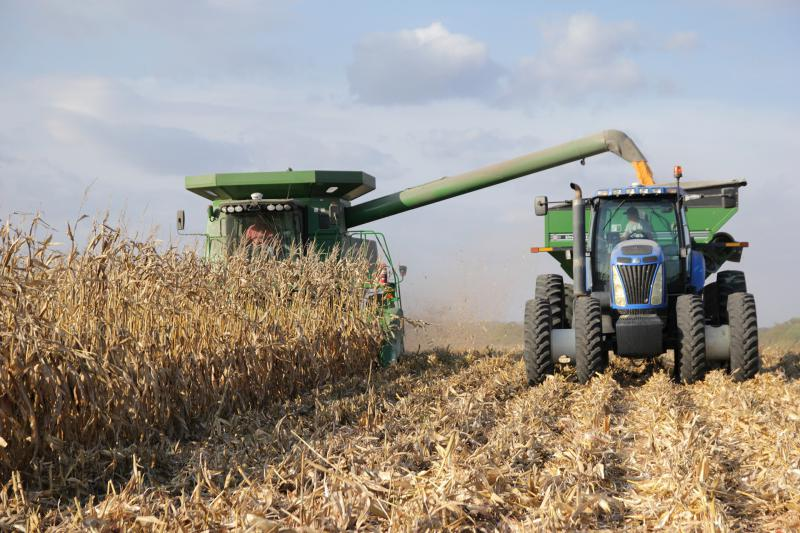 An Illinois farmer harvests his corn crop in this file photo. Average net farm income has tumbled in recent years.