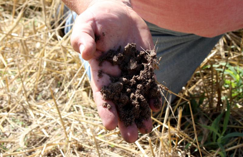 "Farmer Art Tanderup holds a handful of the sandy soil found on his farm. ""There are times when you feel like you're in a blizzard when that sand is blowing,"" Tanderup says."