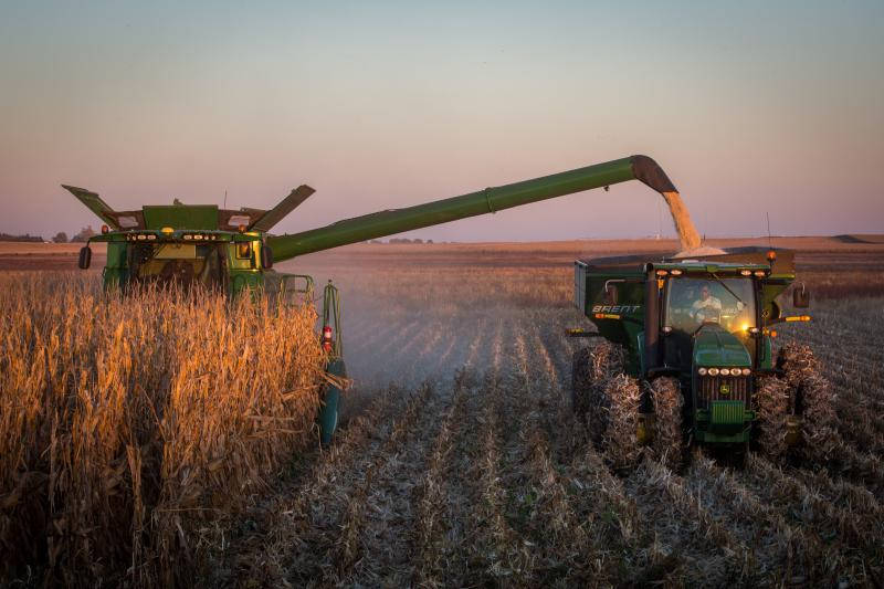 A grain cart collects corn harvested from one of the Hammond family's fields.