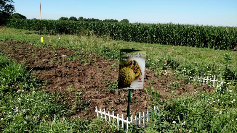 The agricultural landscape research is being conducted at the University of Nebraska-Lincoln's extension center near Mead.