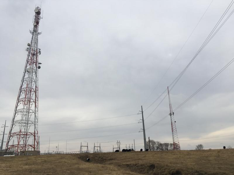 Cattle graze near power lines and a tower in western Missouri.