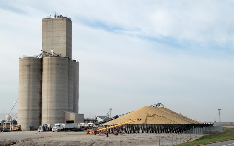 Congress is expected to change the tax law passed last year so that grain elevators run by co-ops don't have an unintended advantage over their competition.