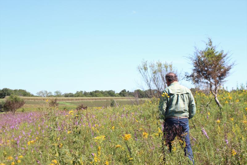 Rudi Roeslein, founder of Roeslein Alternative Energy, walks in prairie that he restored on his northern Missouri farm.