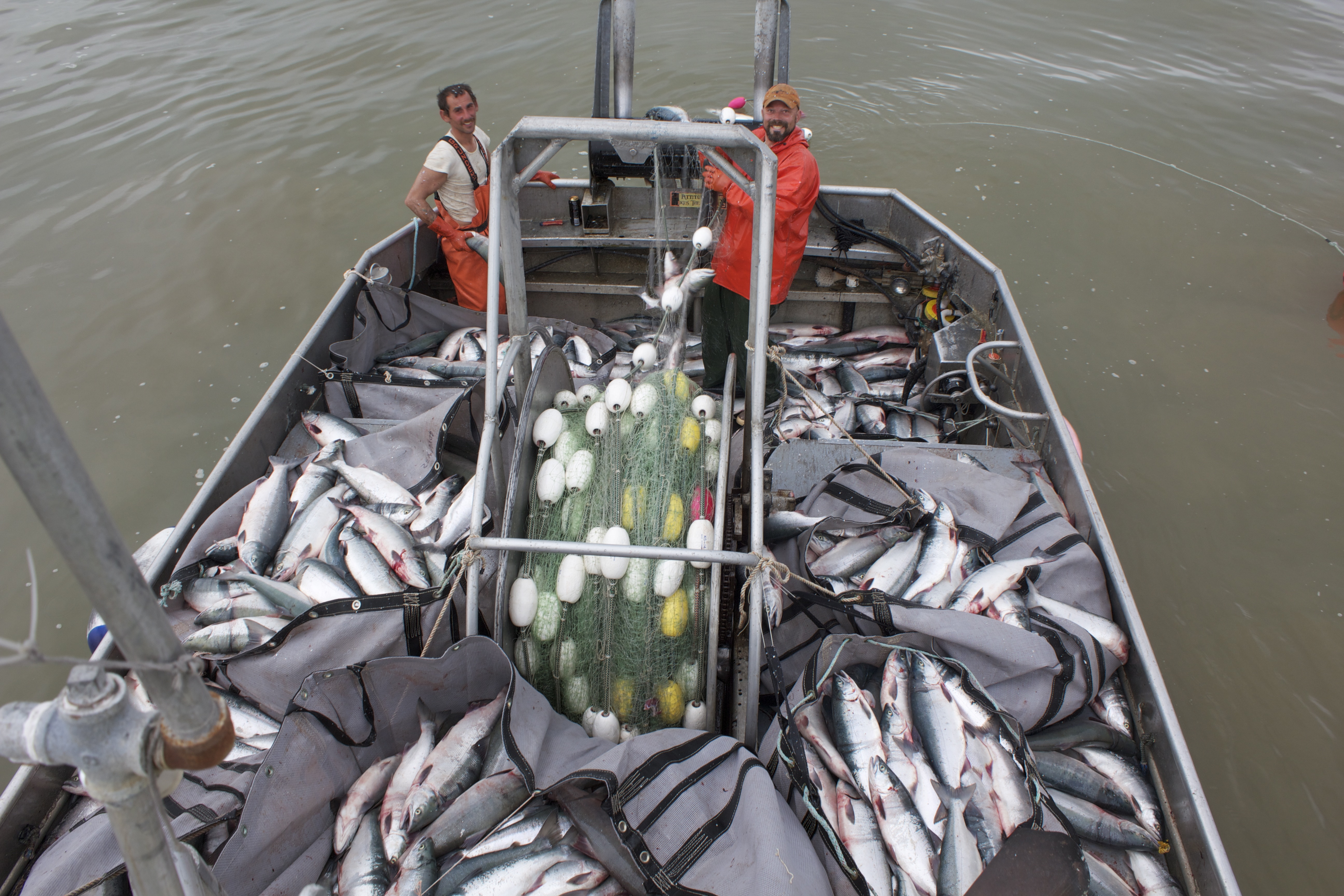 Wide open in the nushagak district through saturday for Bristol bay fishing