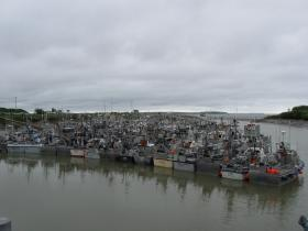 The Dillingham Harbor full of vessels awaiting an opener. This picture was taken early in the 2012 season.