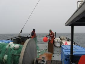 Setting the 200-fathom gillnet used as part of the Port Moller Test Fishery.