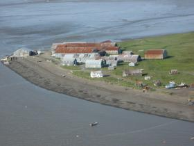 Setnet effort in Clarks Point in the Nushagak District earlier this month.
